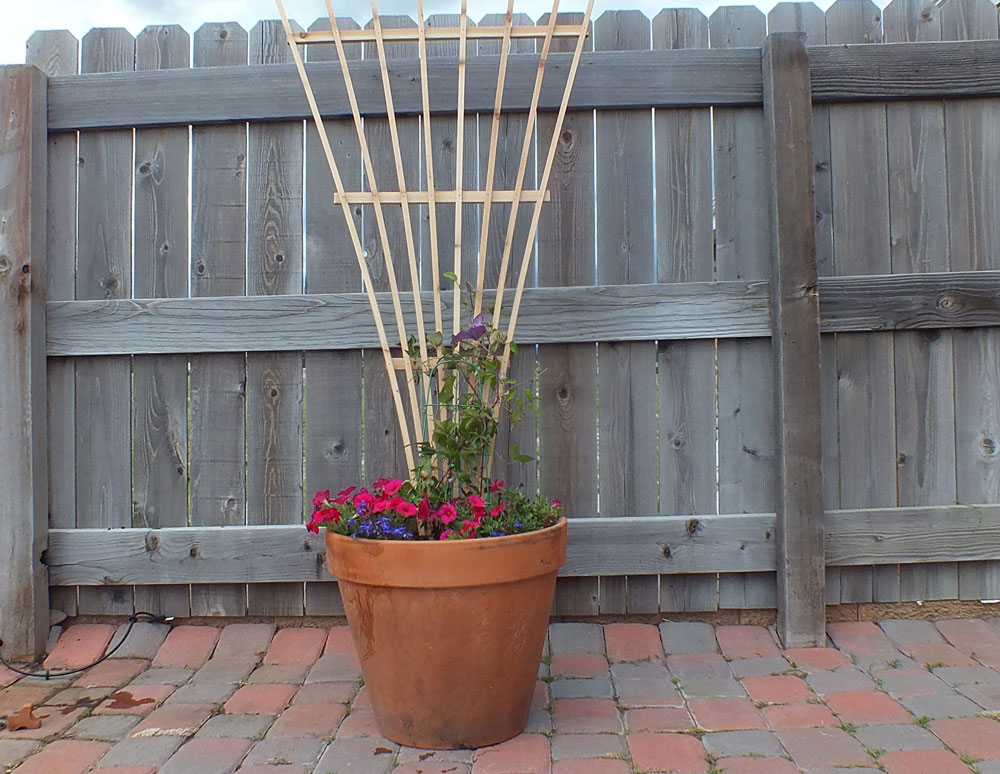 how to build a trellis from two fence boards brian benham. Black Bedroom Furniture Sets. Home Design Ideas